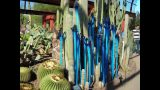 Dale Chihuly exibit at Desert Botanical Gardens…beautiful!