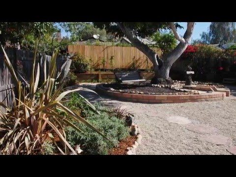 Creating a drought-tolerant yard in three weekends