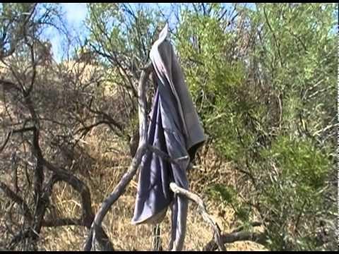 Perils for Migrants Crossing the Arizona Desert
