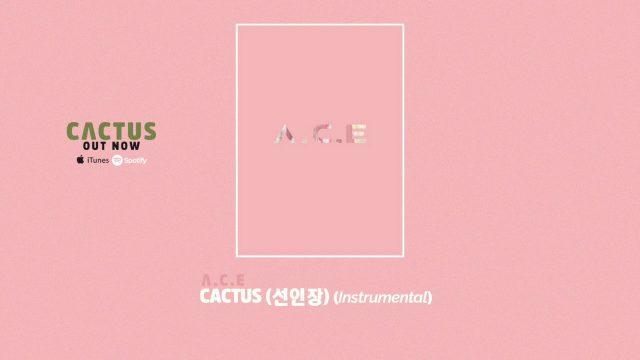 A.C.E(에이스) – 선인장(CACTUS) Instrumental