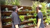 Grow 120 Sq Ft of Garden Up Your House or Wall – Amazing Vertical Raised Bed Garden