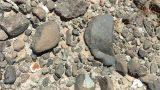Rock hunters watch me find a 2 lb fire agate in the Arizona desert.