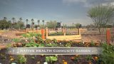Serving Diverse Populations and Places: Phoenix Native Health