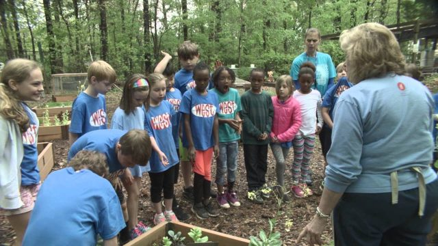 2nd grade Aldridge Gardens field trip 2016