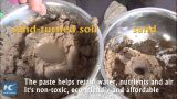Chinese scientists find way to convert sand to soil