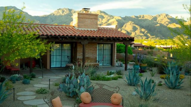 [Modern Backyard] Backyard Desert Landscaping Ideas On A Budget [Small Backyard Ideas]