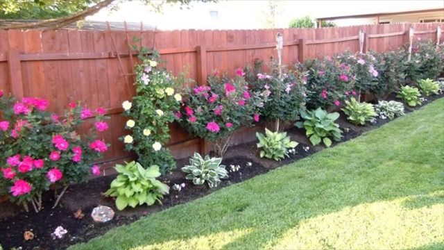 Various Kinds Of Contemporary Landscaping — Rose Bushes – Herbal Garden