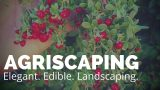 "Edible Landscaping With ""Agriscaping"""