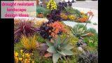 40+ Easy diy drought resistant landscape design ideas #7