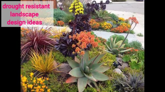 40+ Easy diy drought resistant landscape design ideas #7