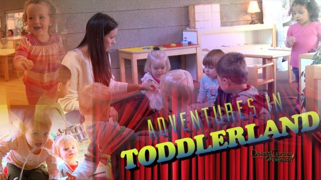 DGM Adventures in ToddlerLand