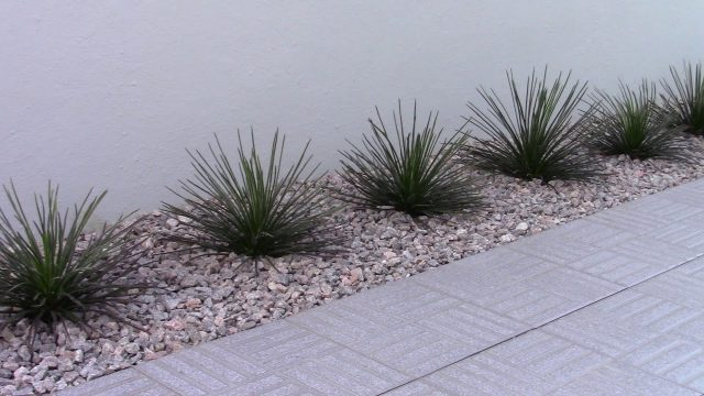 Exotic river  rocks desert landscaping designs PART 10