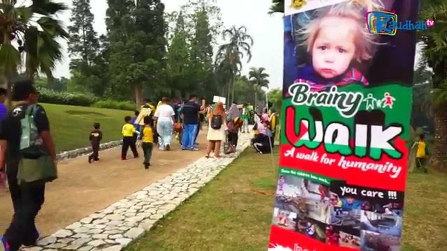 Brainy Bunch Brainy Walk 2015