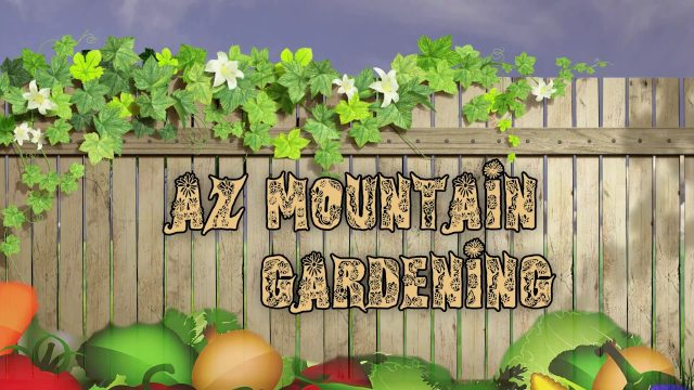 AZ Mountain Gardening Jan 2018