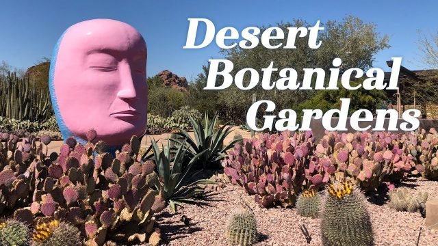 Popular Videos – Desert Botanical Garden & Phoenix