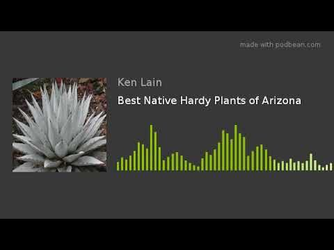 Best Native Hardy Plants of Arizona