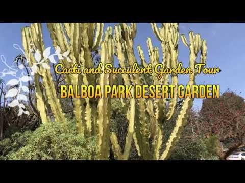 AMAZING TOUR OF THE SUCCULENT & CACTI DESERT GARDEN BALBOA PARK San Diego