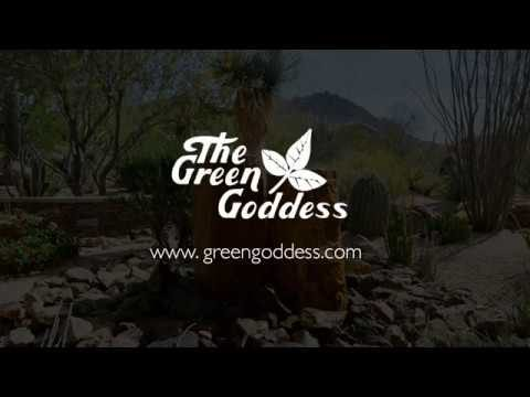 Custom Landscaping Arizona – Landscape & Design