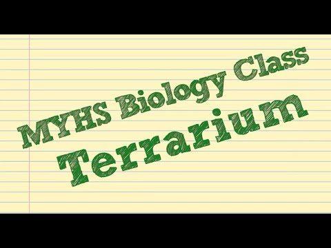 DGM MYHS Biology Terrarium