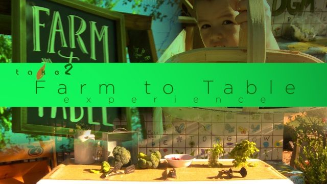 DGM Farm to Table Experience