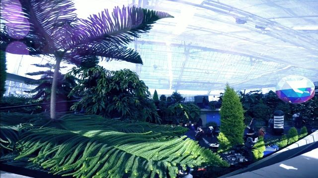 Visiting the Indoor Botanical Garden in Montreal