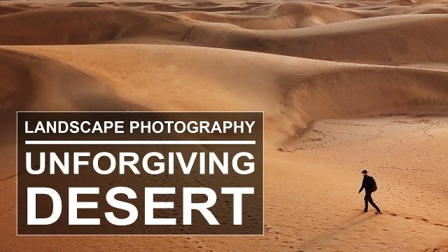 Into the Desert | Landscape Photography | Dunes of Maspalomas