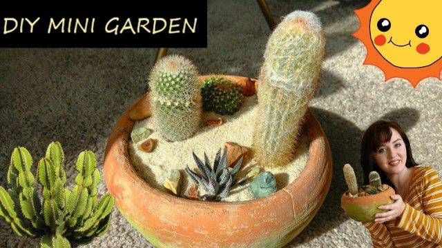Making A Mini Cactus Desert Garden | DIY