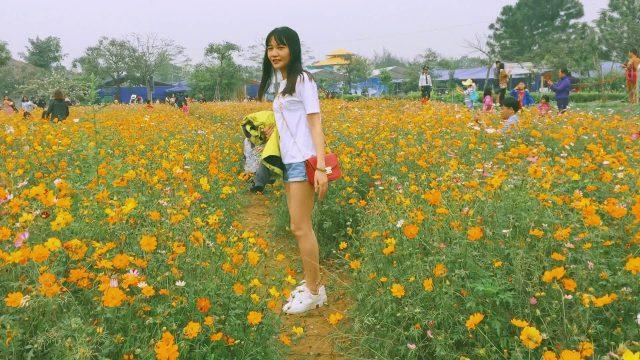 The Phoenix Garden Đan Phượng