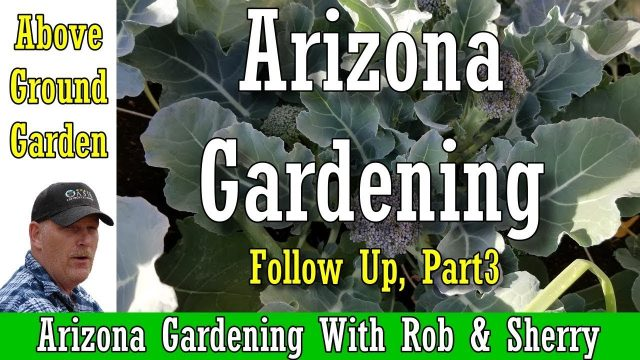 Arizona Above Ground Garden, with Rob & Sherry, Part 3 | Arizona Gardening | #arizona #garden