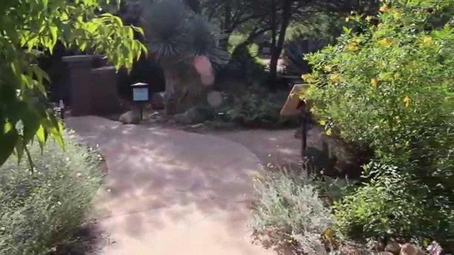 Xeriscape Garden & Patio