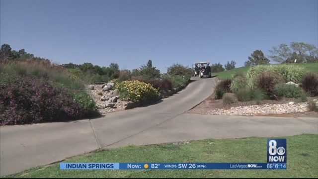 SNWA approves larger rebate for switching to desert landscaping