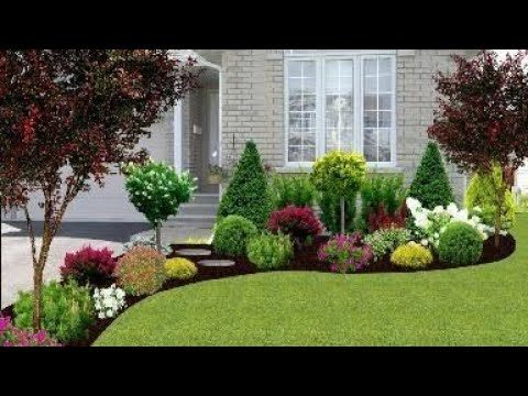 Small beautiful garden landscaping on budget