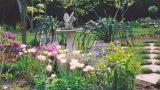 Planning a Cottage Garden