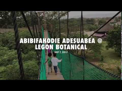 Legon Botanical Gardens: Canopy Walk