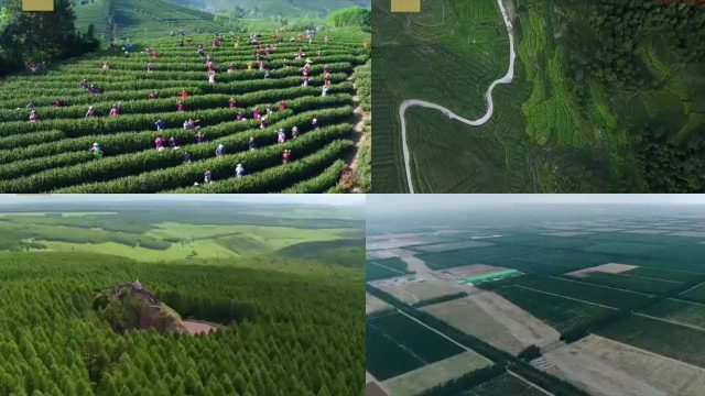 AMAZING! China is Converting Desert Lands Into Forests! Watch How China is Creating Green Life