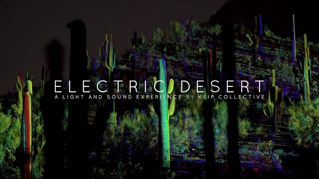 Sneak Peek: Electric Desert at Desert Botanical Garden