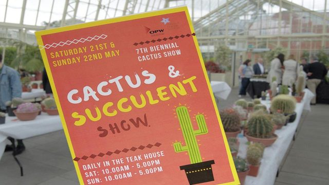 Cactus & Succulent Show – The National Botanic Gardens of Ireland