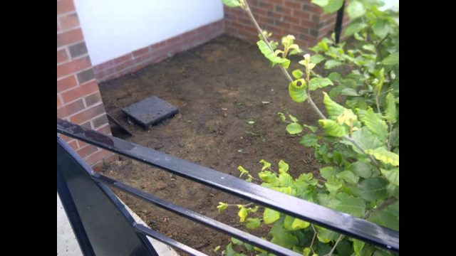 How to – Low maintenance Landscape Gardener manchester 1.avi