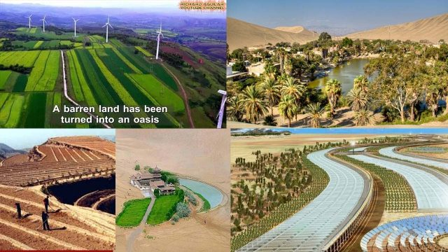 Watch These Very Innovative Ways China Uses To Convert Desert Into Productive Lands Rich With Plants