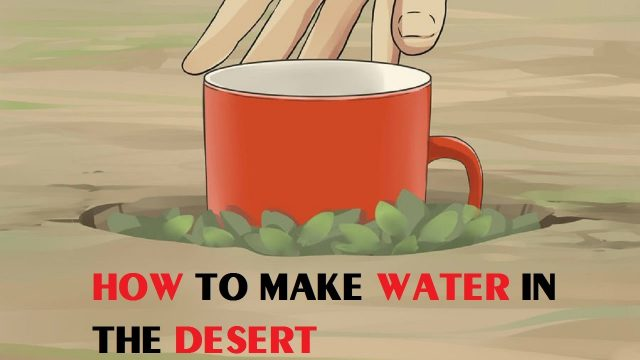 How to Make Water in the Desert