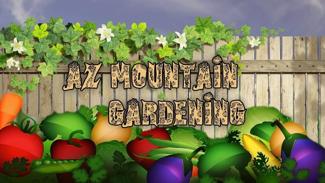 AZ mountain Gardening May 2018
