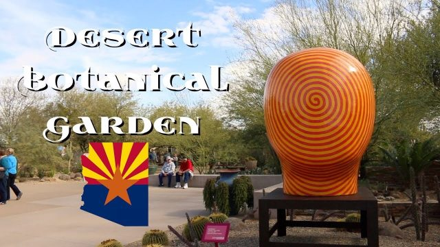 Desert Botanical Garden in Phoenix, Arizona 🏜