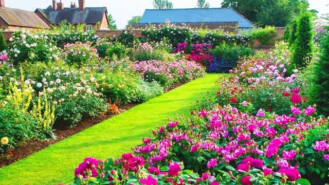 Home and Garden – Amazing Landscaping Design Ideas