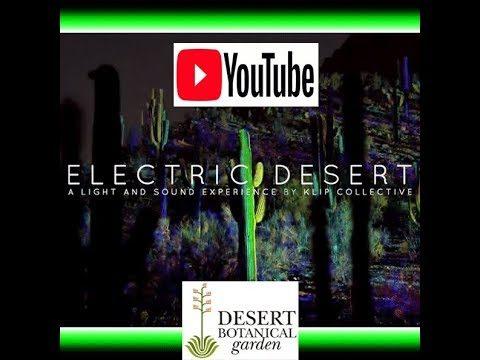 Desert Botanical Garden Electric Desert