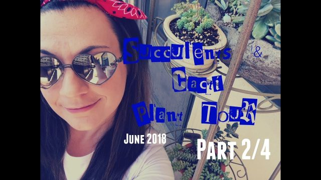 June 2018 SUCCULENTS & CACTI PLANT TOUR | Part #2