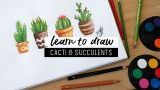 HOW TO DRAW CACTI + SUCCULENTS
