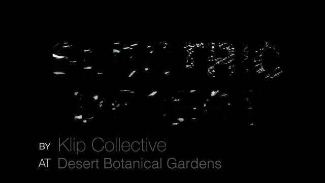 Electric Desert at the AZ Desert Botanical Garden by Klip Collective 2018.