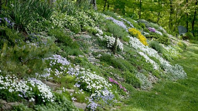 Landscaping Ideas for Sloped Backyard -Garden Design Ideas On A Slope