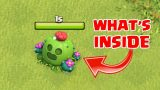 WHAT HAPPENS WHEN U REMOVE SPIKE-Y CACTUS IN CLASH OF CLANS | COC DECEMBER UPDATE 2018 |