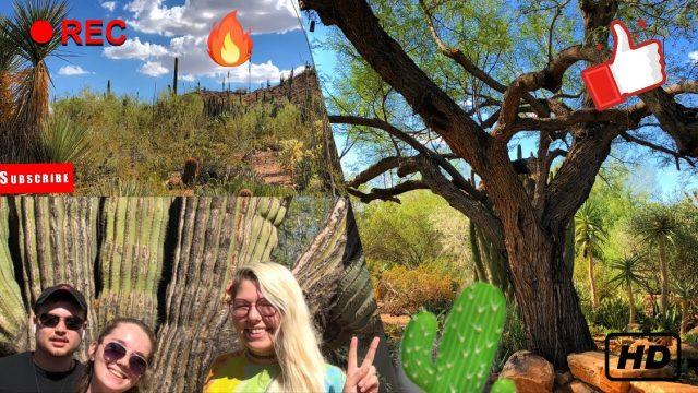 Desert Botanical Gardens Adventure | Pt.13